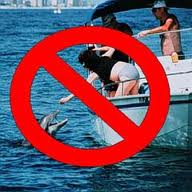 "www.noaanews.noass.gov ""Please do not feed or harass wild dolphins."" July 13, 2000 —NOAA"