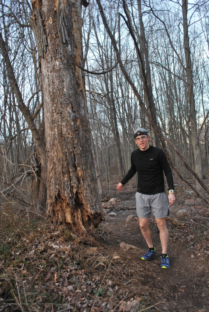 Neil Clauson, a grades 5-8 science teacher at Laurel Oaks Adventist School in Hamden, is among many wondering why CT DEEP destroyed a healthy tree instead of addressing potentially dangerous dead trees.